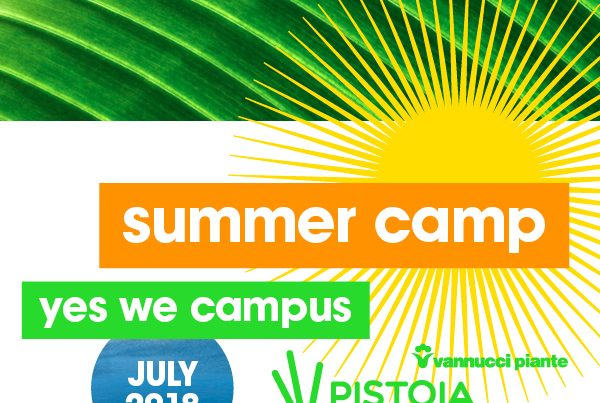 Summer camp landscape architecture